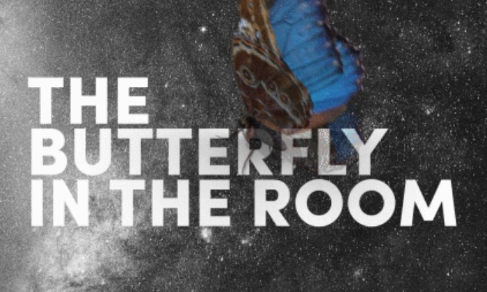 The Butterfly in the Room